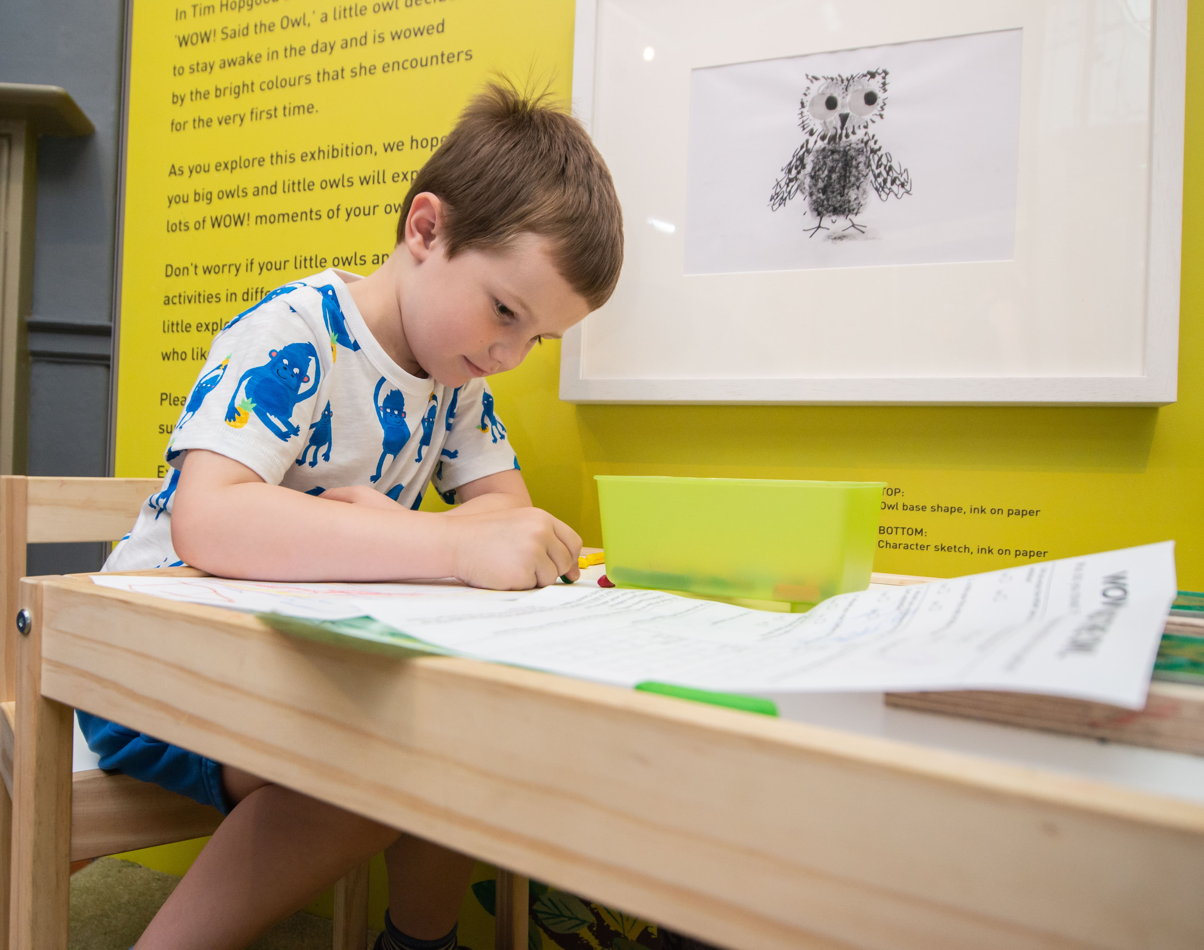 A boy sits drawing at a table. He is wearing a blue and white tshirt. There is a picture of an owl on the wall next to him. A darts in Doncaster project